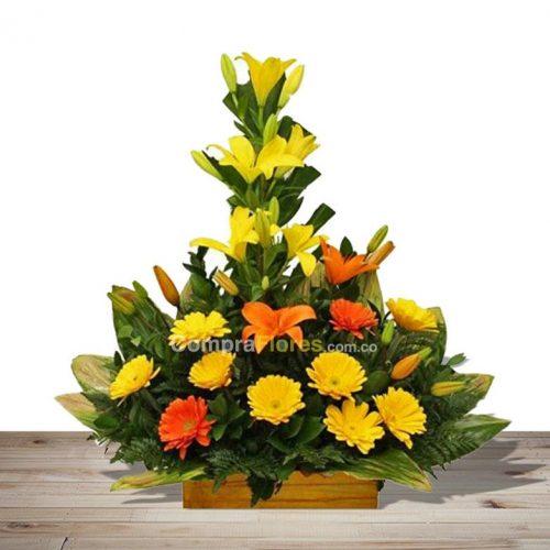 flores en cali